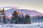 Mount Monadnock with Wetlands in Frost in Early Winter, Fitzwilliam, NH