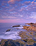 Tidal Zone in Early Morning, Pemaquid Point, ME