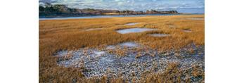 Salt Marsh and Ice near Cape Poge Bay and Tomo Neck, Chappaquiddick Island, Martha's Vineyard, Edgartown, MA