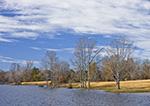 Minton Lake in Early Winter, near Sylvania, Lonoke County, AR
