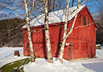 Little Red Barn and White Birches in Snow, Alstead, NH