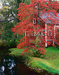 Red Barn with Red Maple Tree in Fall, Tully Village, Town of Orange, MA
