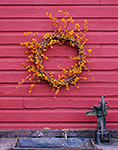 Bittersweet and Grapevine Wreath on Red Barn Wall over Old Water Pump, Phillipston, MA
