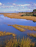 Salt Marsh in Fall, Nantucket, MA