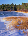 Marsh and Forest along Shore of Lake Rohunta in Winter, New Salem, MA