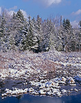 Wetlands and Hemlock Trees at Sportsman Pond after Fresh Snowfall, Fitzwilliam, NH