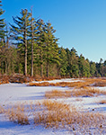 Late Afternoon Winter Light on Frozen Marsh at South Spectacle Pond,  Quabbin Reservation, New Salem, MA
