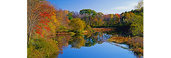 Fall Colors Reflecting on the Charles River in Evening Light, Holliston and Medfield Town Line, MA