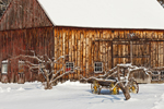 Old Wooden Barn with Apple Trees and Wagon in Winter, Rockingham, VT
