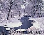 Priest Brook after Fresh Snowfall, Royalston, MA