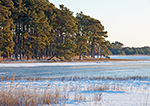 Frozen Pond and Snow-covered Marsh, Chincoteague National Wildlife Refuge, Assateague National Seashore, VA