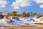 Dunes in St. George Island State Park with Blue Sky and Cumulus Clouds, Gulf Coast, Florida Panhandle, Franklin County, St. George Island, FL