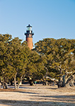 Live Oak Trees and Currituck Beach Lighthouse, Currituck Heritage Park, Outer Banks, Corolla, NC