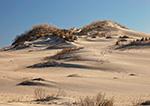 Morning Light on Dunes at Pea Island National Wildlife Refuge, Cape Hatteras National Seashore, Outer Banks, NC