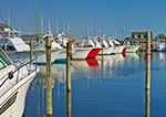 Late Afternoon Light on Sport Fishing Boats at Hatteras Harbor, Outer Banks, Hatteras, NC