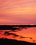 Sunset over Salt Marsh on Great Island, Cape Cod National Seashore,  Cape Cod, Wellfleet, MA