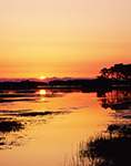 Sunrise at Chincoteague National Wildlife Refuge, Assateague National Seashore, VA