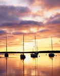 Still Morning and Golden Light, Cuttyhunk Harbor, Cuttyhunk Island, Elizabeth Islands, Town of Gosnold, MA