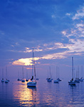 Sailboats in Evening Light, Westport Harbor Westport, MA