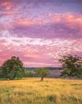 Sunset at Wachusett Meadow Wildlife Sanctuary, Princeton, MA