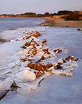Ice at Salt Pond Edge, Ninigret Conservation Area, Charlestown, RI