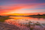 Sunset on Salt Marsh and Dickerson Creek off West Neck Harbor, Long Island, Shelter Island, NY