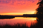 Predawn on Old Chehaw River from Old Chehaw Landing, Ace Basin National Estuarine Research Reserve, Colleton County, SC