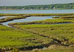 Salt Marsh and Three Mile Harbor, Long Island, East Hampton, NY