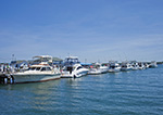 Motor Cruisers and Sport Fishing Boats on Greenport Waterfront, Long Island, Village of Greenport, Southold, NY