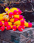New Lobster Buoys Ready to Go, Vinalhaven Island, ME