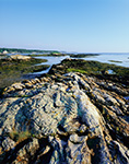 Coastline at South End of Malaga Island, Phippsburg, ME