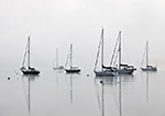 Boats in Early Morning Fog on Connecticut River, Essex, CT