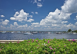Billowing Cumulus Clouds on Summer Day over Boats in Watch Hill Cove with Rosa Rugosa in Foreground, Village of Watch Hill, Westerly, RI