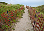 Path Through Dunes with Beach Fence, Napatree Point Conservation Area, Town of Watch Hill, Westerly, RI
