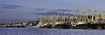 Commercial Fishing Boat Fleet in New Bedford Harbor, New Bedford,MA