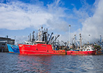 Commercial Fishing Boats in New Bedford Harbor, New Bedford,MA
