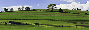 Horse Paddock and Farmland, Hudson River Valley, Duchess County, Stanford, NY