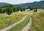 Dirt Road through Rural Countyside, Hudson River Valley, Duchess County, Amenia, NY