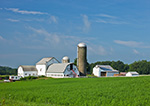 View of Farm with Silo and White Barns, Hudson River Valley, Duchess County, Pleasant Valley, NY