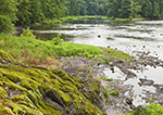 View of the Wallkill River with Moss-covered Rocks, Hudson River Valley, Ulster County, Gardiner, NY