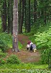 Visitors at Innisfree Gardens, Hudson River Valley, Duchess County, Millbrook, NY