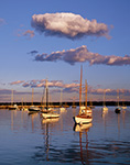 Late Evening Light Shines on Sailboats in Vineyard Haven Harbor, Martha's Vineyard, Tisbury, MA Original: 4x5 inch color transparency