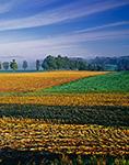 New York Farmland, White Creek, NY Original: 4x5 inch color transparency