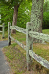 Old Split-rail Fence with Lichens, Old Kings Highway, Cape Cod, Barnstable, MA