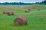 Rolling Hills with Round Hay Bales, Rural Maine Farmland, Belgrade Lakes Region, Kennebec County, Belgrade, ME