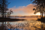 Early Morning Fog and Light at Lake Dennison Recreation Area, Birch Hill Wildlife Management Area, Winchendon, MA