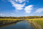 Salt Marsh, Tidal Creek and Boardwalk at Audubon of Rhode Island Wildlife Sanctuary, Kickamuit River, Warren, RI