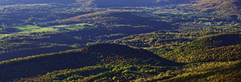 Autumn View of Valley from Mt. Greylock Looking East, Berkshire Mountains, Adams, MA