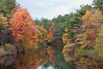 View of Millers River in Fall, Athol, MA