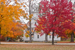 The Old Academy Building and Sugar Maples in Fall, New Salem Common Historic District, New Salem, MA